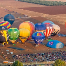 Balloon Festival 2014 - Gilboa